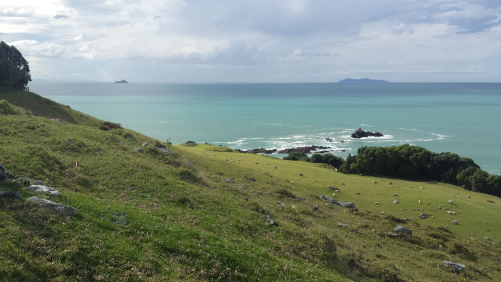 Ausblick vom Mt. Manganui