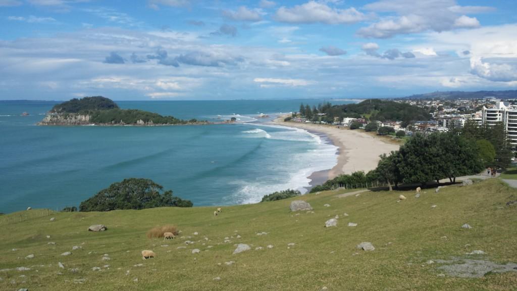 Tauranga_Neuseeland (3)