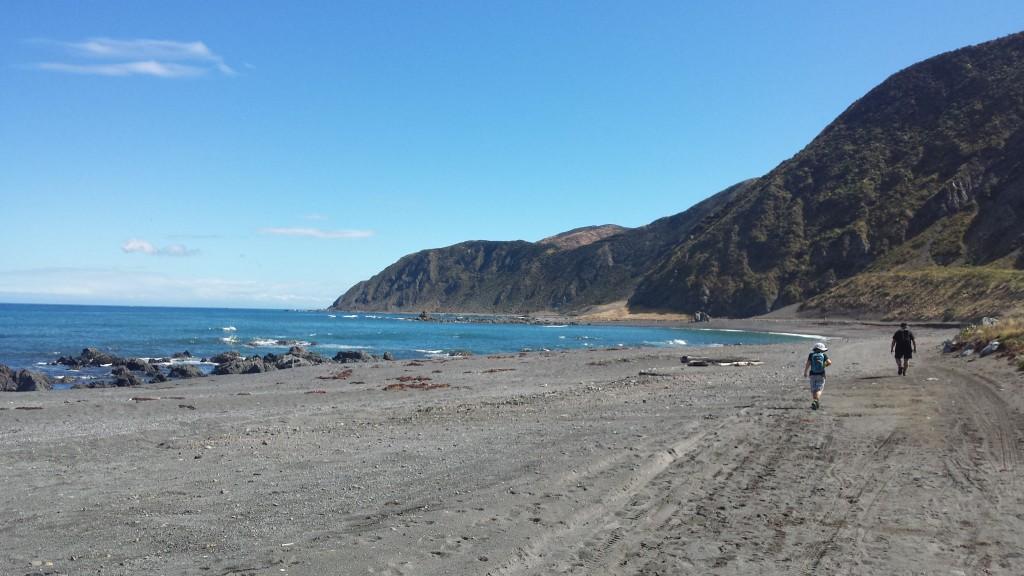 WWOOFing_Nordinsel_Neuseeland (2)