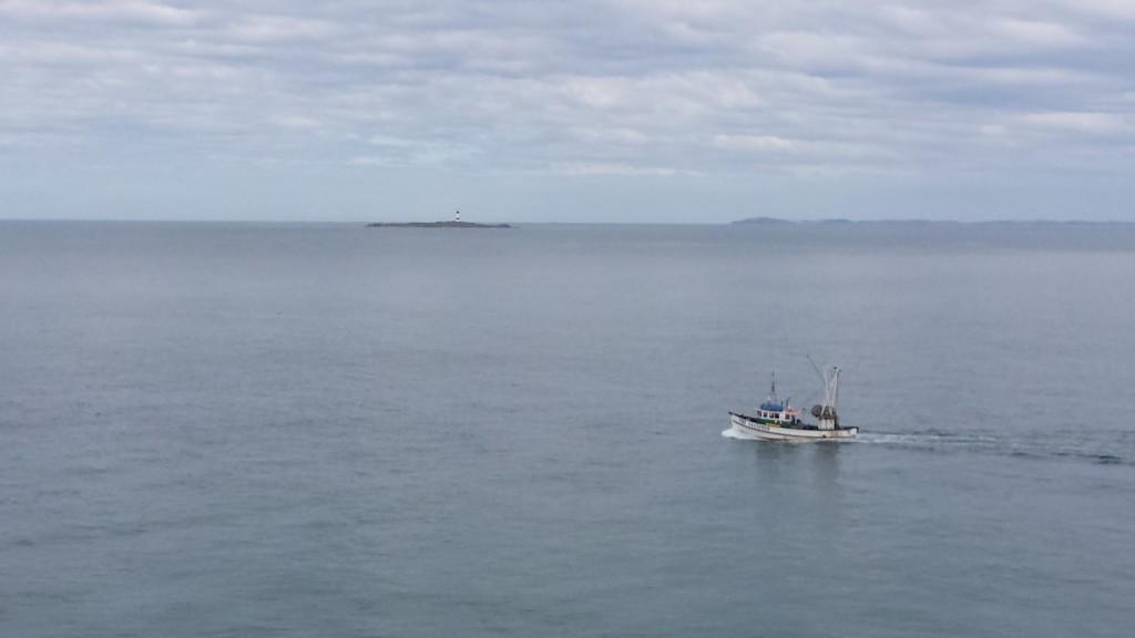 Reise_Südinsel_Neuseeland